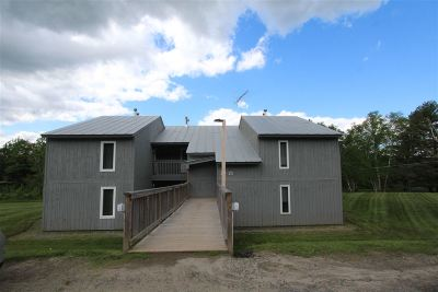 Burke Condo/Townhouse For Sale: 2160 Mountain Road #24