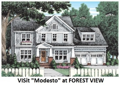 New Boston Single Family Home For Sale: Lot 48 Lorden Rd Forest View