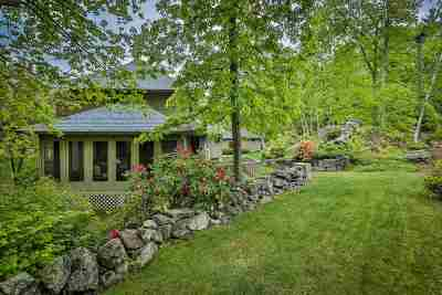 Windham Single Family Home For Sale: 212 Range Road