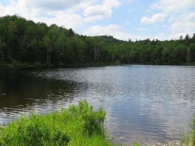 Grafton Residential Lots & Land For Sale: Halfmoon Pond Road