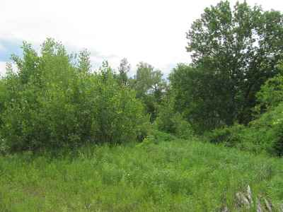 Rutland Town Residential Lots & Land For Sale: Grover Drive #31