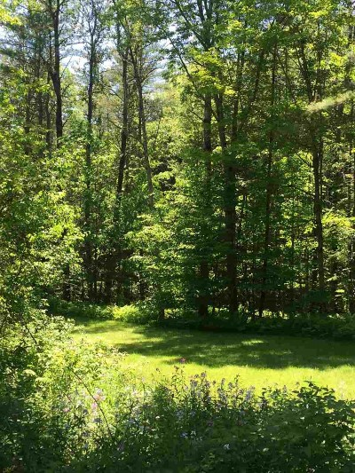 Residential Lots & Land For Sale: 1023 Turnpike Road