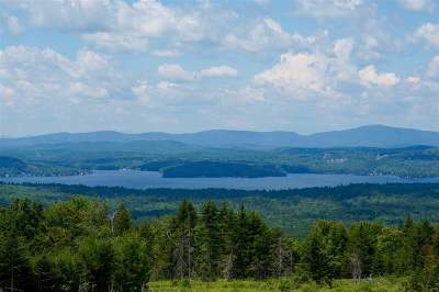 Merrimack County Residential Lots & Land For Sale: Lot 2 Stonehouse Road