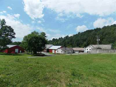 Pawlet Commercial For Sale: 2589 Vt Route 153