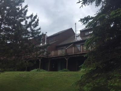 Burke Condo/Townhouse For Sale: 127 Burkeside
