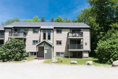 Cambridge Condo/Townhouse For Sale: 339 Mountain View Drive #Riversid
