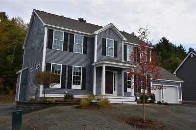 Nashua Single Family Home For Sale: 47 Schwinn Drive #110