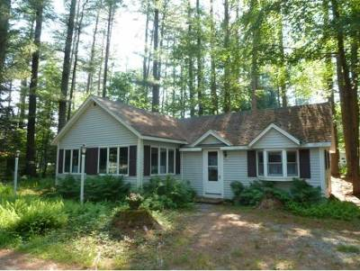 Rumney Single Family Home For Sale: 29 Salvation Avenue