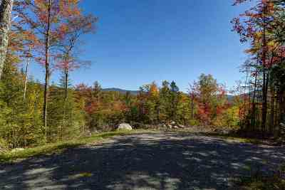 Easton Residential Lots & Land Active Under Contract: Lost River Road #41-2