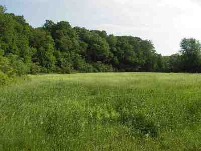 Residential Lots & Land For Sale: 4425 Ethan Allen Highway