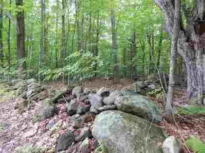 Deering Residential Lots & Land For Sale: Rangeway Road