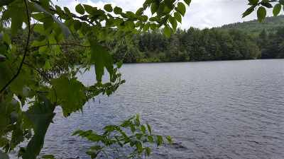 Bristol NH Residential Lots & Land For Sale: $89,000
