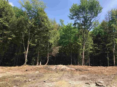 Essex Residential Lots & Land For Sale: 167 Sleepy Hollow Road #Lot 2