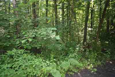 Franklin County Residential Lots & Land For Sale: 97 Corliss Next To Road