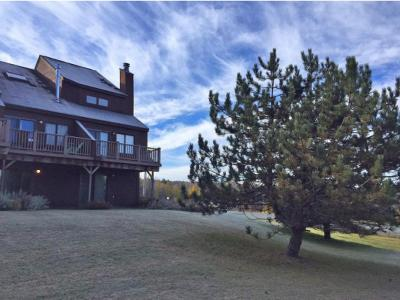 Caledonia County Condo/Townhouse For Sale: 25 Burkeside Unit #128 #128
