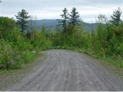 Bethlehem Residential Lots & Land For Sale: Steeple View Drive