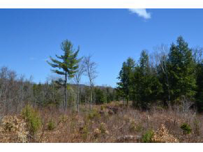 Campton Residential Lots & Land For Sale: 880 Homan Road