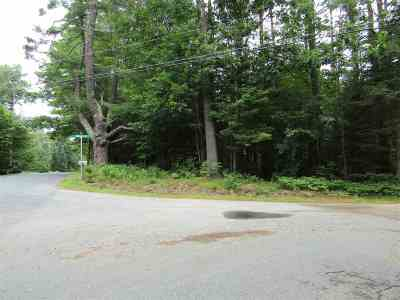 Mountain Lakes Residential Lots & Land For Sale: French Pond Road #75 &