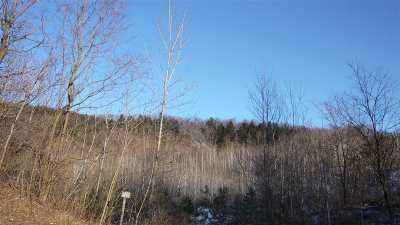 Hinesburg Residential Lots & Land For Sale: Route 116