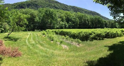 Bristol Residential Lots & Land For Sale: 1946 Lower Notch Road #Lot 1