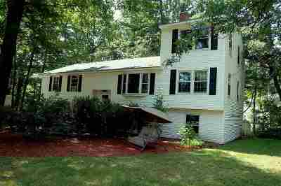 Nashua Single Family Home For Sale: 8 Kim Drive