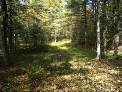 Lisbon Residential Lots & Land For Sale: 77 Berkshire Road