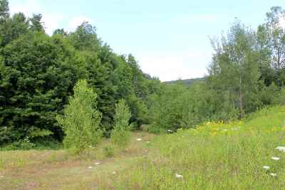 Berkshire VT Residential Lots & Land For Sale: $39,000