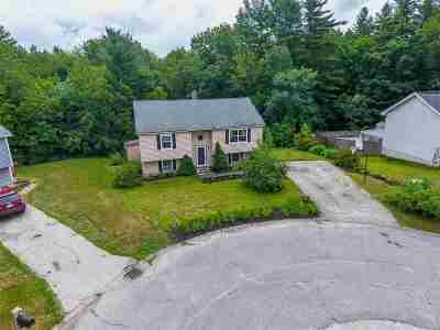 Merrimack Single Family Home For Sale: 11 Mt. Lawny Lane