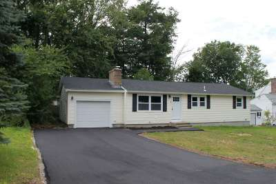 Hooksett Single Family Home For Sale: 9 Pleasant View Drive