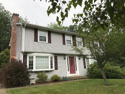 Nashua Single Family Home For Sale: 13 Coleridge Road