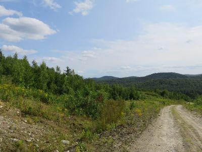Grafton Residential Lots & Land For Sale: Mountain View Lane