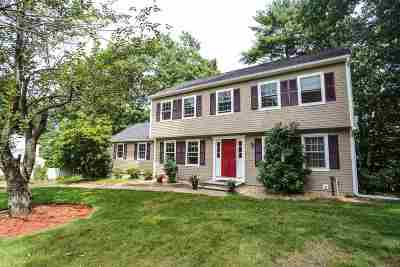 Nashua Single Family Home For Sale: 58 Spindlewick Drive