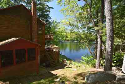 Moultonborough Single Family Home For Sale: 59 Richardson Shores Road