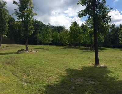 Castleton Residential Lots & Land For Sale: Vermont Route 30