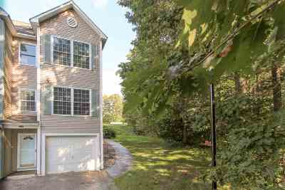 Hudson Condo/Townhouse For Sale: 20b Intervale Ct. Circle #20B