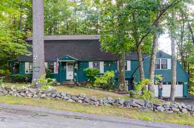 Milford Single Family Home For Sale: 42 Falconer Avenue