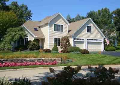 Nashua Single Family Home For Sale: 9 Gilboa Lane