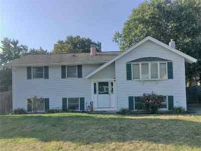 Nashua Single Family Home For Sale: 102 Dalton Street