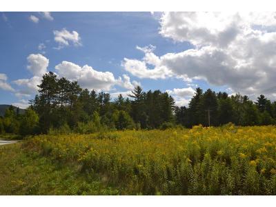 Rutland Town Residential Lots & Land For Sale: 1 Wynnridge Drive