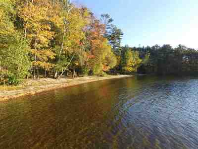 Moultonborough Single Family Home For Sale: 253 Whittier Highway #2