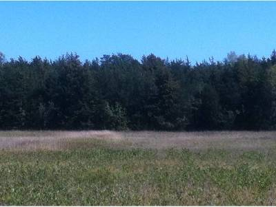 Grand Isle County Residential Lots & Land For Sale: 275 Us Route 2