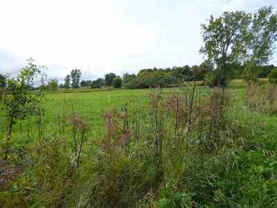 Charlotte Residential Lots & Land For Sale: Spear Street #Lot A