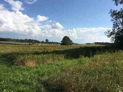 Charlotte Residential Lots & Land Active Under Contract: 783 Mt Philo Road #Lot 2