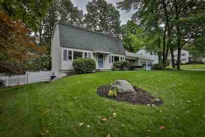 Nashua Single Family Home For Sale: 18 Clearview Drive