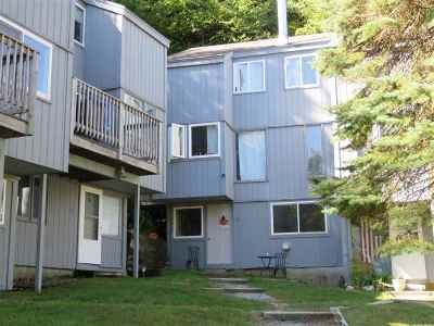 Francestown Condo/Townhouse Active Under Contract: 29 Eastside #12 Lane #12