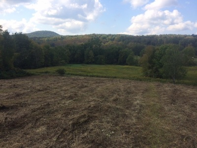 Pawlet Residential Lots & Land For Sale: 302 Edwards Lane