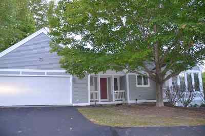 Belknap County Single Family Home For Sale: 29 Hawk Ridge Road
