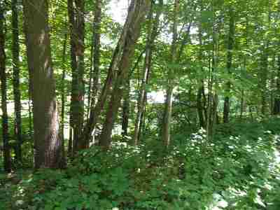 Haverhill Residential Lots & Land For Sale: 64 Mount Moosilauke Highway
