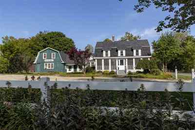 Merrimack County Single Family Home For Sale: 29 Little Sunapee Road