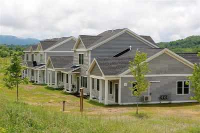 Hinesburg Condo/Townhouse For Sale: 84 Redbud Lane